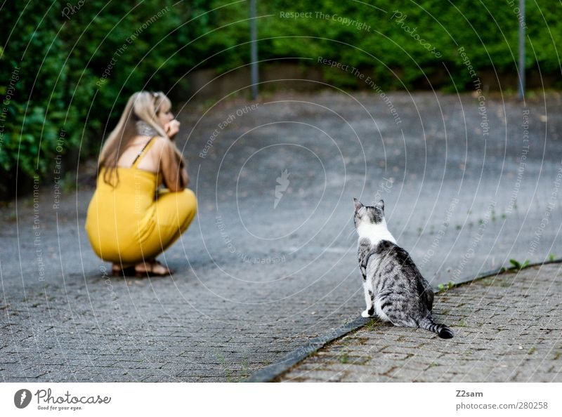 Cat Human being Youth (Young adults) Girl Loneliness Adults Street Cold Feminine Young woman 18 - 30 years Blonde Sit Bushes Cute Observe