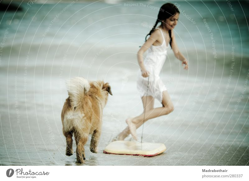Dog Child Water Vacation & Travel Beautiful Summer Ocean Girl Joy Beach Feminine Playing Coast Happy Waves Infancy