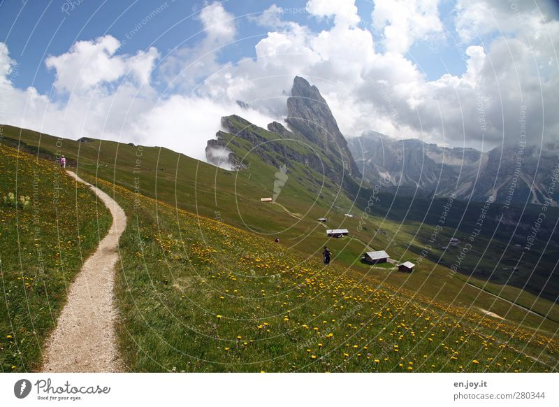 Seceda with Geisler peaks Human being Nature Landscape Plant Clouds Flower Grass Meadow Hill Rock Alps Mountain Peak Lanes & trails Blossoming Relaxation Hiking