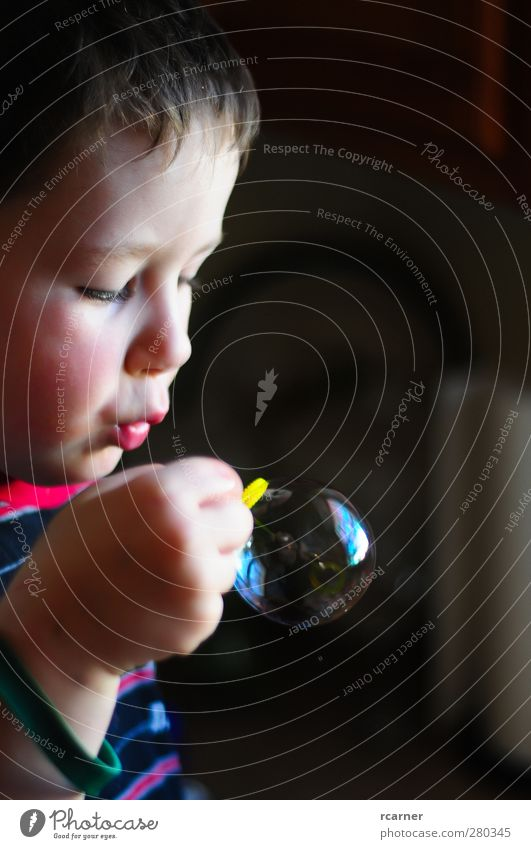 Learning to Blow Bubbles Children's game Head Hand 1 Human being 3 - 8 years Infancy Effort Colour photo Interior shot Copy Space right Light Shadow Contrast