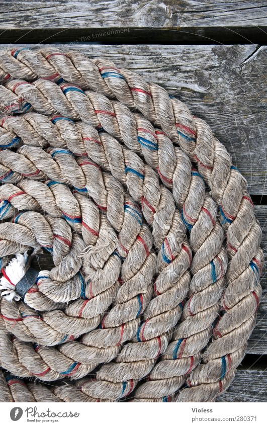 Hiddensee | Maritime Navigation Inland navigation Cruise Boating trip Dinghy Watercraft Rope Safety Colour photo