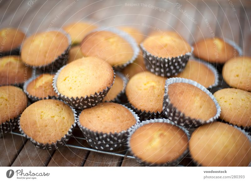 Party Cake Baking Dessert Fresh Small Confectionary Cooling cuisine Culinary Cupcake food homebaked individual many rack Snack Dog food undecorated Plain