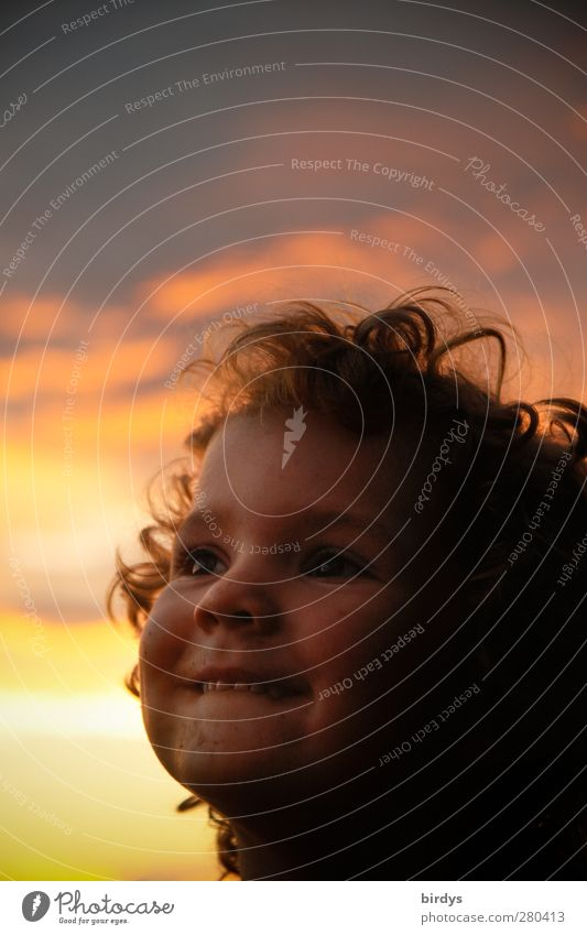 fortunate Child Toddler Girl Head Hair and hairstyles Face 1 Human being 3 - 8 years Infancy Sunrise Sunset Summer To enjoy Smiling Looking Illuminate Dream