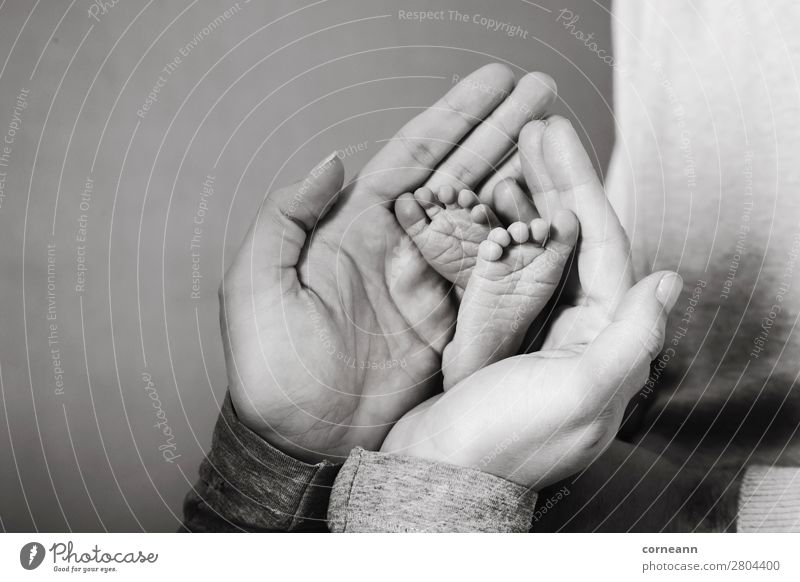 Mothers hands holding premature babies feet Lifestyle Health care Parenting Human being Baby Parents Adults Hand Feet 2 0 - 12 months 18 - 30 years