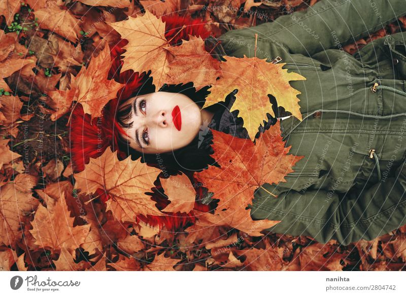 Young woman lying down in the autumn floor Woman Human being Nature Youth (Young adults) Beautiful Red Relaxation Leaf Calm 18 - 30 years Face Lifestyle Adults