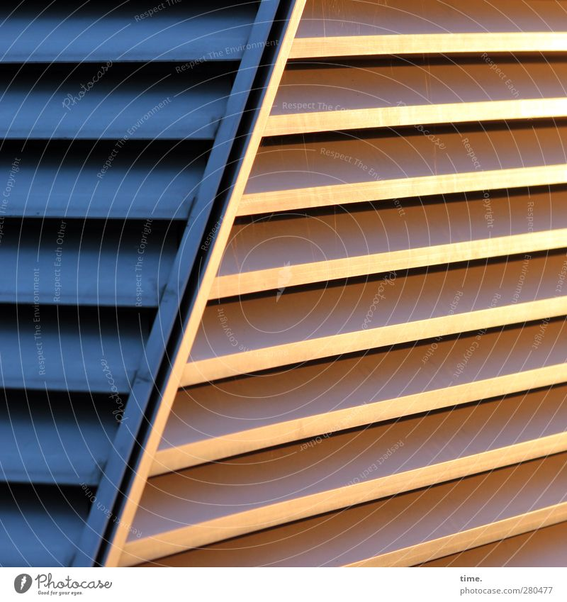 Blue City Wall (building) Architecture Wall (barrier) Metal Art Line Gold Glittering Elegant Design Esthetic Perspective Planning Communicate