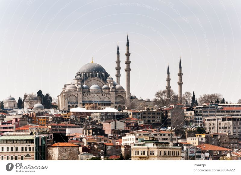 Istanbul Vacation & Travel Tourism Trip Sightseeing City trip Sky Downtown House (Residential Structure) Building Architecture Mosque Minaret Politics and state