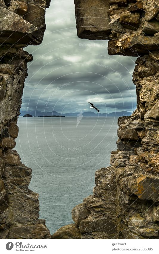 Stone window at Duntulm Castle on the Isle of Skye Atlantic Ocean Vantage point View from a window Vista Window Flying Floating Flight of the birds Past