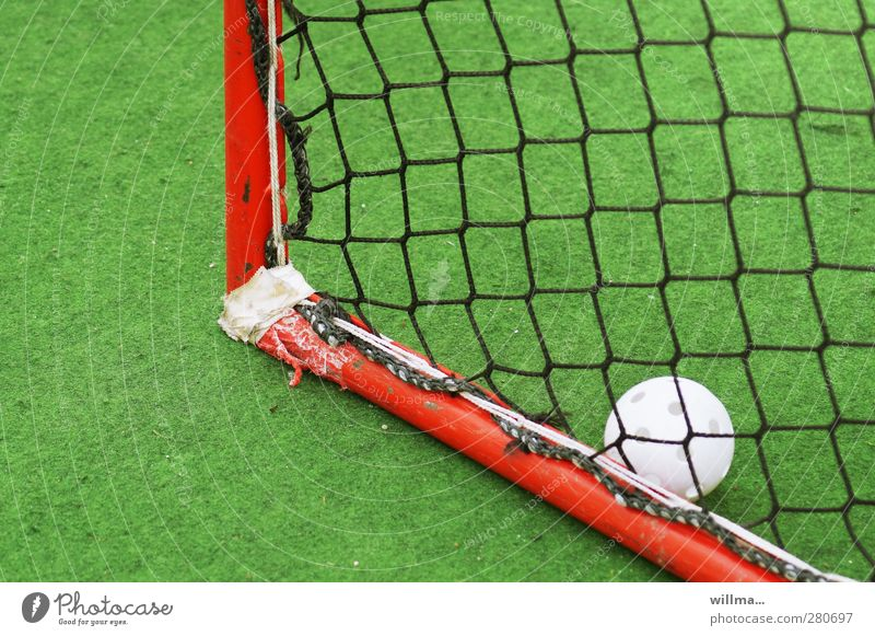 Gate of the month Leisure and hobbies Playing Sports Hockey Goal Soccer Goal Sporting Complex Grass surface Green Red White Broken Repaired Colour photo