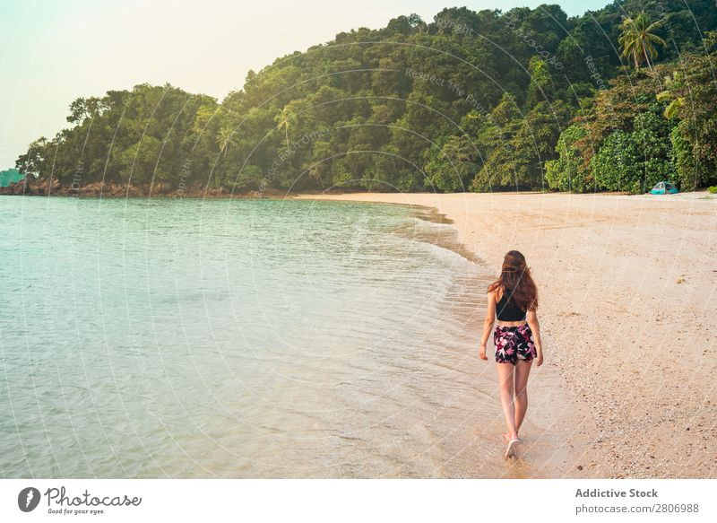 Woman walking on sand shore near water Beach Ocean Walking Water Jamaica Forest Sand Coast Tropical Exotic Summer Playing Thin Lady Palm of the hand Freedom