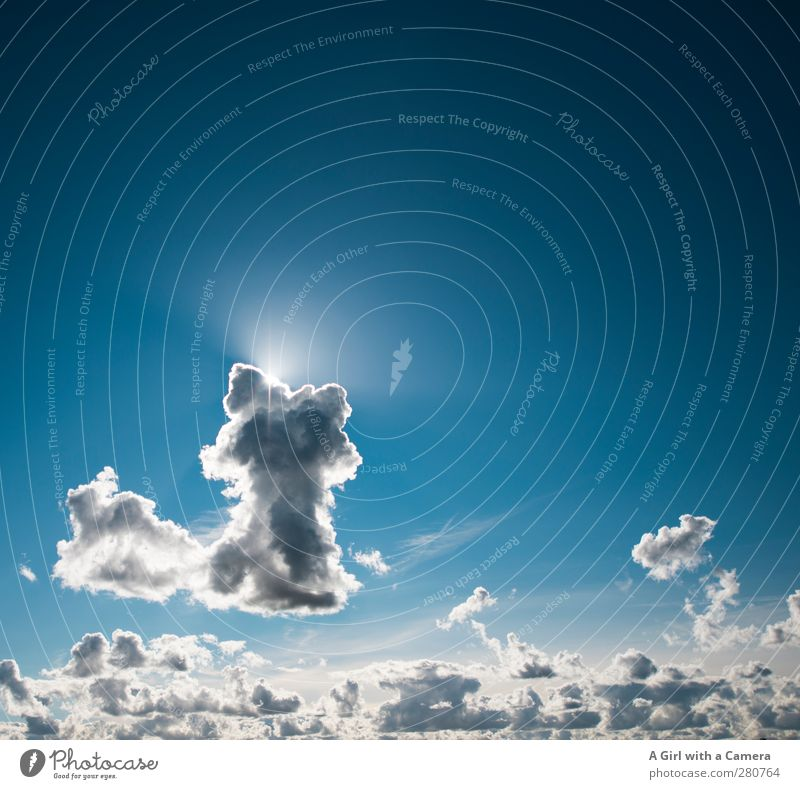 cloud number nine or cloud seven ?? Environment Nature Elements Air Sky Sky only Clouds Summer Weather Beautiful weather Illuminate Blue Ease Colour photo