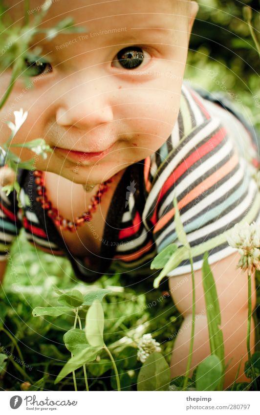 little adventurer Masculine Baby Body Head 1 Human being 0 - 12 months Observe Discover Crawl Study Friendliness Joie de vivre (Vitality) Enthusiasm