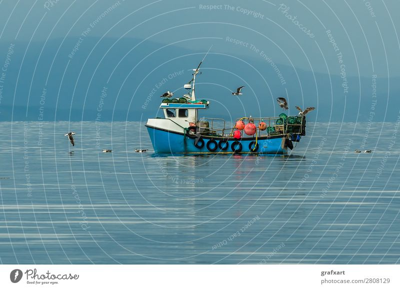 Small fishing boat with seagulls on the Atlantic in Scotland Atlantic Ocean Watercraft Business Catch Fishing (Angle) Fishery Fisherman Gairloch Great Britain