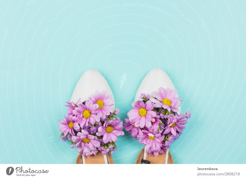 Female shoes filled with pink daisies and wildflowers White Blossom leave Feasts & Celebrations Plant Bright Natural Beautiful Floral Style Pastel tone Flower