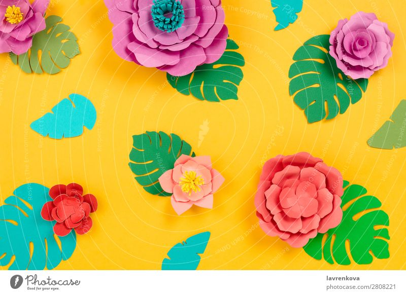 Tropical floral background made of papercraft flowers and leaves Cut Daisy Lotus Philodendron Monstera paperart Craft (trade) Art Creativity Beauty Photography