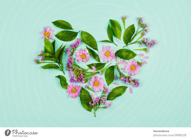 Heart made of leaves, violet and pink flowers Nature Summer Plant Green Flower Leaf Background picture Love Spring Decoration Romance Bouquet Beauty Photography
