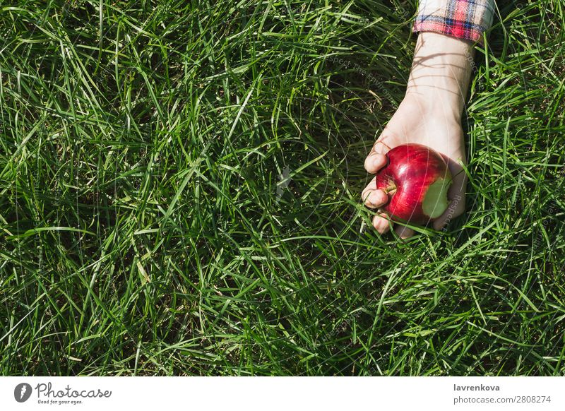 Flat lay with woman's hand holding bitten apple Bite Checkered Nature Picnic Pick Apple Hand Grass Colour Meadow Exterior shot Organic Background picture