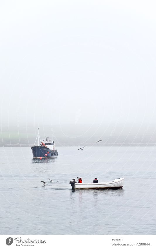 Blue Water Ocean Calm Relaxation Cold Coast Watercraft Waves Fog Wet Fish Navigation Bay Seagull Fishing (Angle)