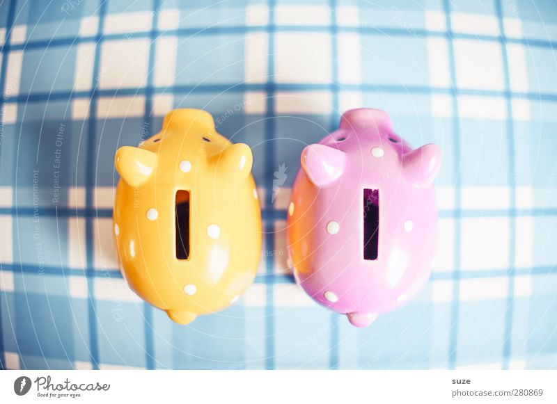 Blue Yellow Happy Small Funny Pink Design Poverty Lifestyle In pairs Decoration Shopping Money Cute Plastic Kitsch