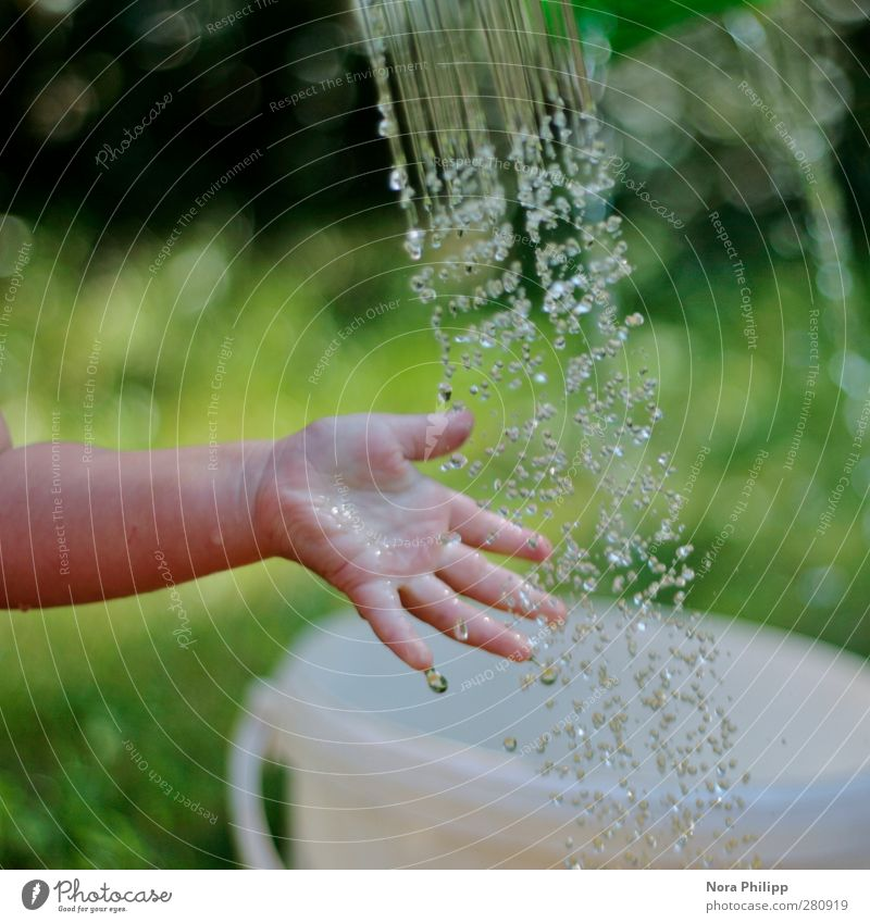 Human being Child Water Green Hand Summer Cold Life Playing Grass Infancy Baby Arm Fresh Wet Fingers