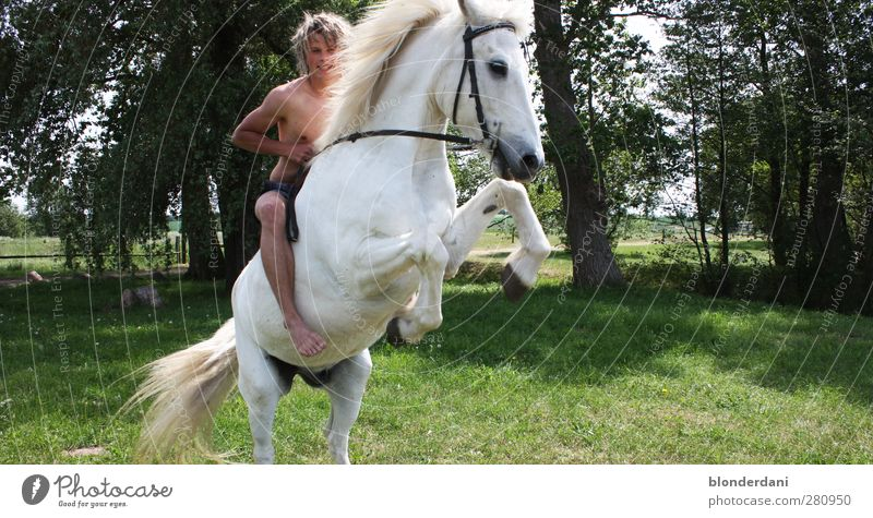 """Birk Borkason"" Joy Happy Athletic Leisure and hobbies Ride Adventure Sun Equestrian sports Masculine Young man Youth (Young adults) Body Nature Summer Bushes"