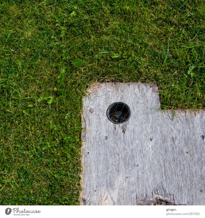 Hole in the wood on lawn Meadow Brown Gray Green Lower Wood Wooden board To anchor Construction Hollow Bracket Corner Old Colour photo Subdued colour