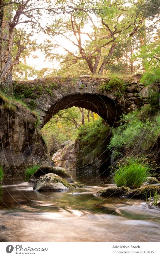 Medieval  bridge on the mountain river Bridge Sunset Old Park Nature Stone Forest River national Vintage Background picture Vacation & Travel Evening medieval