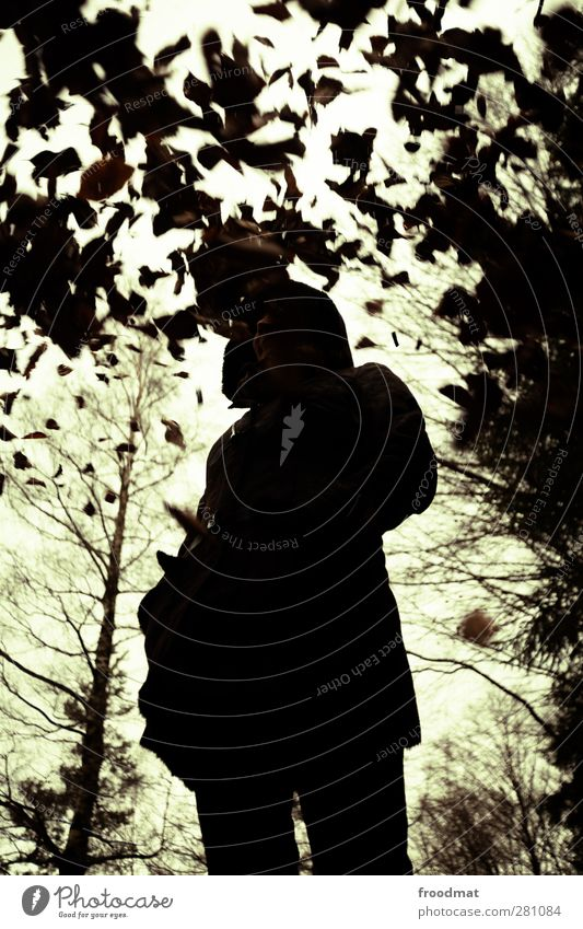 autumn shadow Human being Feminine Young woman Youth (Young adults) Woman Adults 1 Nature Autumn Bad weather Tree Leaf Forest Dirty Cold Gloomy Reluctance