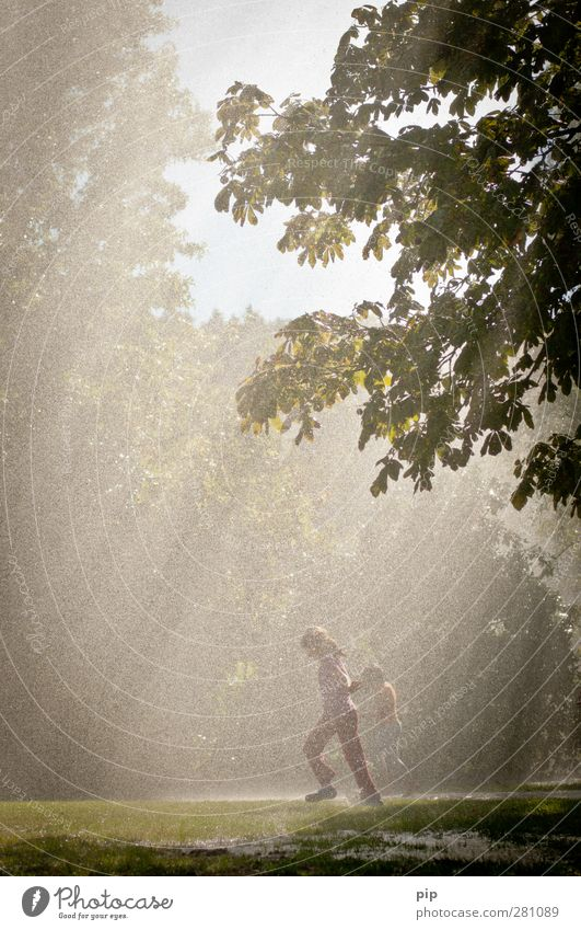 Human being Child Nature Water Summer Tree Joy Forest Environment Meadow Playing Grass Movement Jump Park Rain