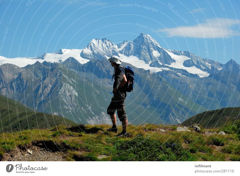 in the Alps 2 Vacation & Travel Summer Hiking Man Adults 1 Human being 30 - 45 years Landscape Beautiful weather Mountain Peak Snowcapped peak Austria Walking