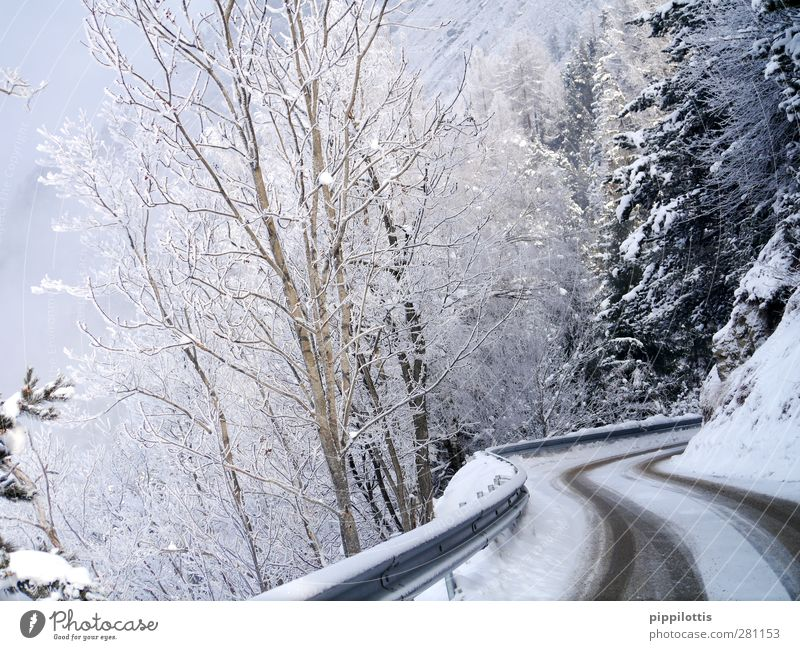 Nature Vacation & Travel White Landscape Winter Forest Mountain Environment Street Lanes & trails Snow Tourism Weather Ice Trip Curiosity