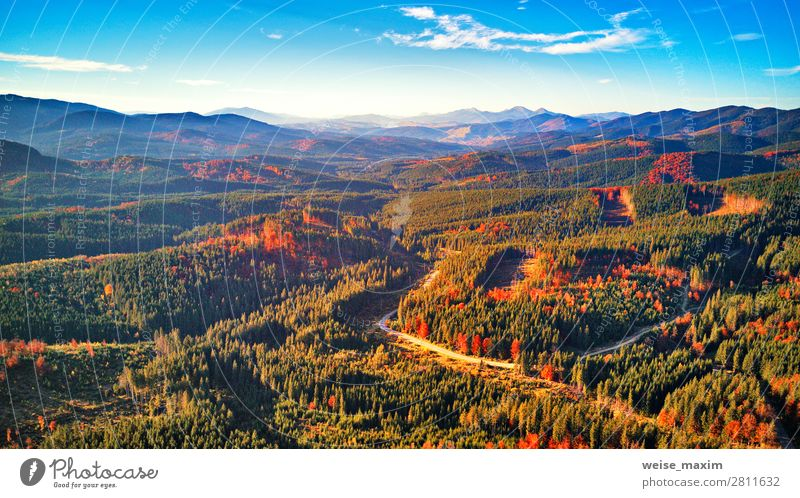 Road in fall season woodland with clouds and blue sky Sky Vacation & Travel Nature Summer Blue Colour Green Landscape Red Tree Clouds Leaf Forest Far-off places
