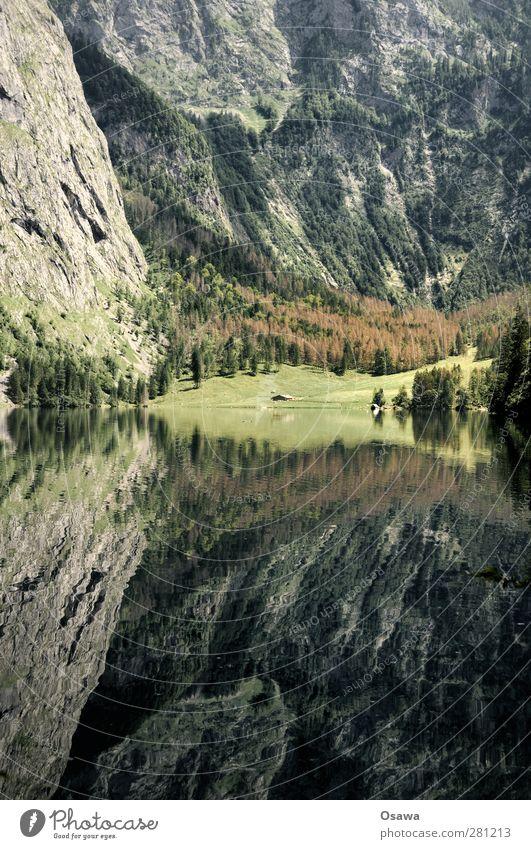 Upper Lake Landscape Nature Water Reflection Mountain Alps Berchtesgaden Berchtesgaden Alpes National Park Bavaria salet Alpine pasture Lake Königssee Rock