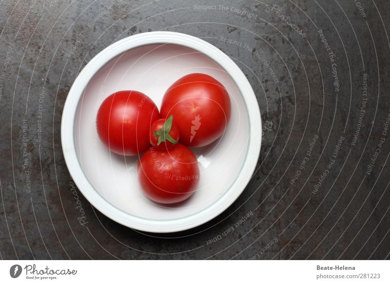 Tomatoes! Salad! Humppa! Food Vegetable Nutrition Lunch Dinner Organic produce Vegetarian diet Bowl Nature Plant Agricultural crop Fragrance Esthetic Healthy