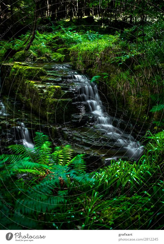 Creek with waterfall in forest near Ullapool in Scotland Brook Movement Energy Renewable Flow River Peaceful Fresh Healthy Great Britain Background picture