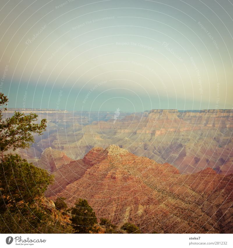 pastel canyon Sky Mountain Canyon Warmth Blue Brown Orange Red Grand Canyon Colour photo Exterior shot Deserted Copy Space top Twilight Panorama (View)
