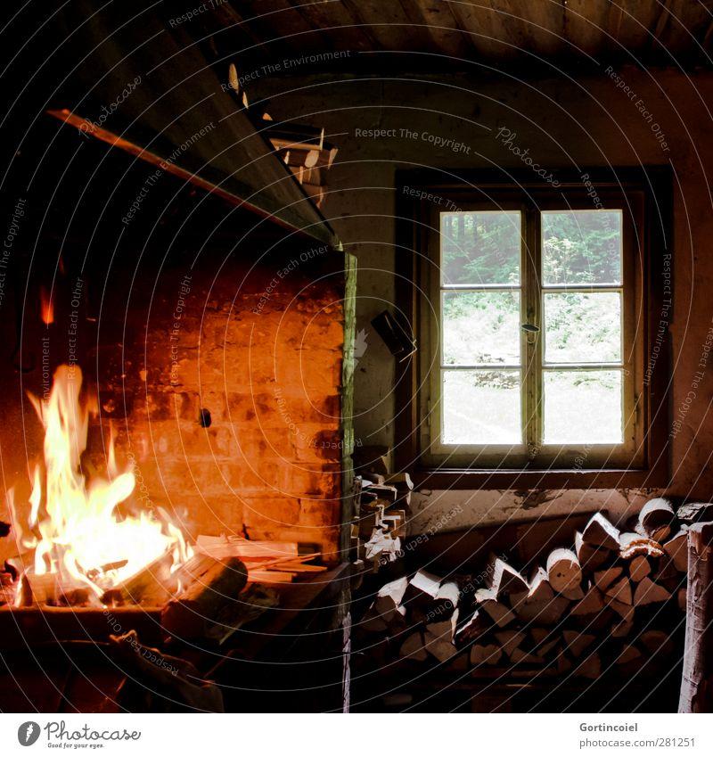 forest kitchen Forest Hut Dark forest hut Kitchen Stove & Oven Fireplace Firewood Window Window transom and mullion Colour photo Interior shot Light