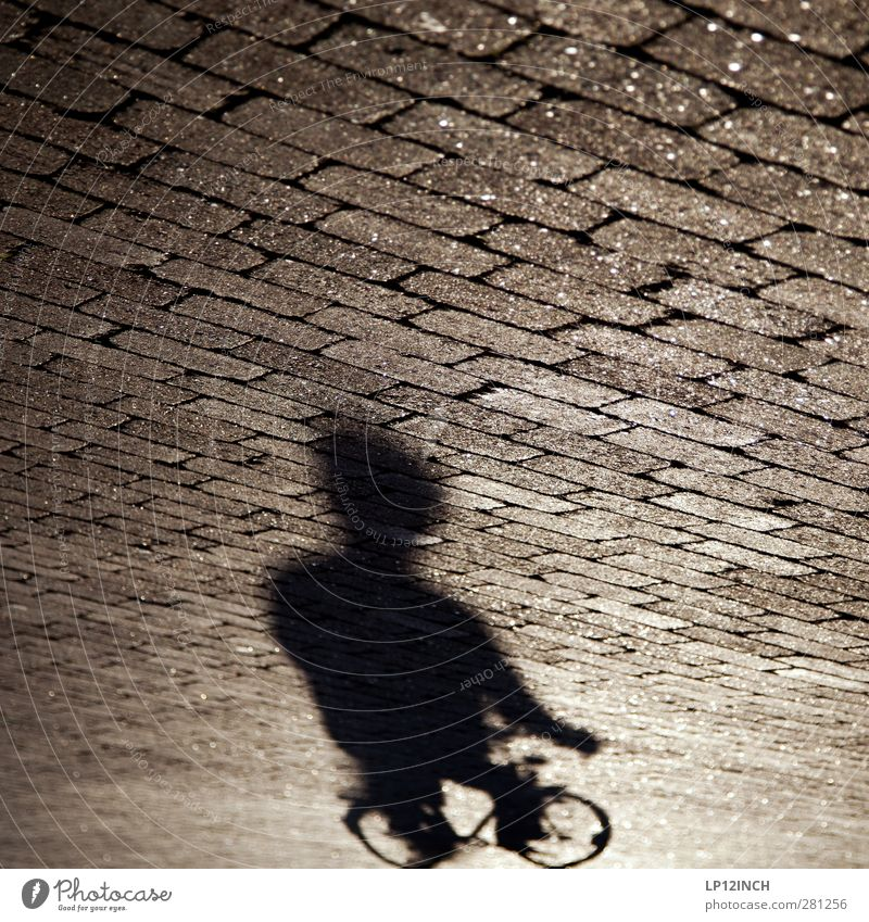 Shadow Biker Life Cycling Human being Masculine Man Adults Body 1 13 - 18 years Child Youth (Young adults) 18 - 30 years Transport Road traffic Street
