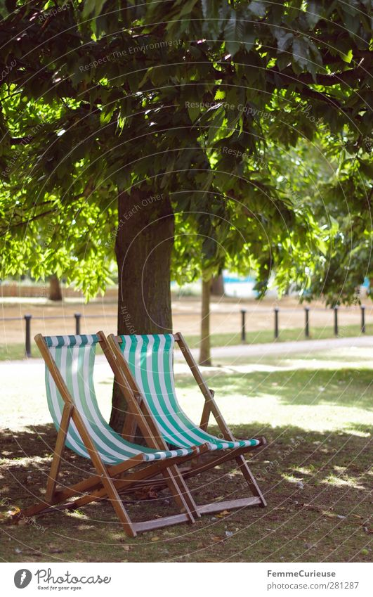 TiMe To ReLaX. Leisure and hobbies Summer vacation Sunbathing Contentment Relaxation Nature Hyde Park Deckchair Green White Sunbeam Tree Shadow Autumnal Fence