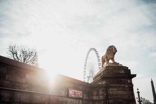 Side view of lion sculpture Statue Architecture Sculpture Lion Paris French Art Stone France Europe Ancient Beautiful Skyline lew Town lev Culture Vantage point
