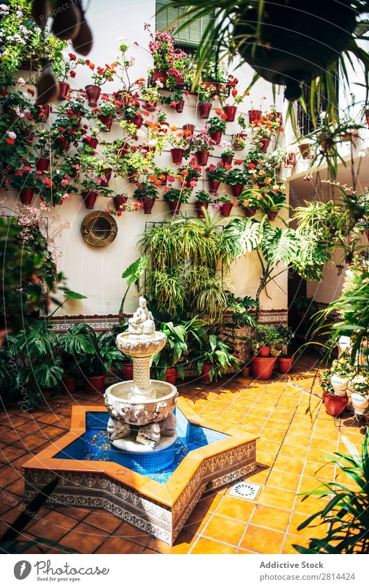 Typical Andalusian patio with fountain and numerous plants geraniums and carnations on the walls. Cordoba, Spain Home Florida Interior design Courtyard Garden