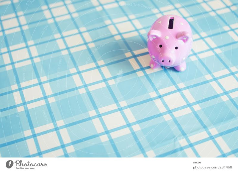 Blue Happy Small Funny Pink Design Poverty Lifestyle Decoration Shopping Money Cute Plastic Kitsch Rich Checkered
