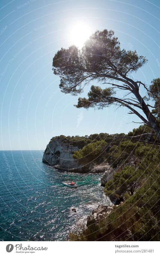 Nature Vacation & Travel Summer Tree Sun Relaxation Coast Horizon Watercraft Travel photography Idyll Bay Sailing Paradise Mediterranean sea Blue sky