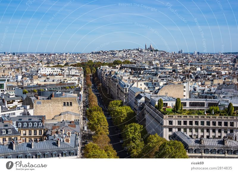 View of the Basilica Sacre-Coeur in Paris, France Relaxation Vacation & Travel Tourism City trip House (Residential Structure) Clouds Autumn Tree Town