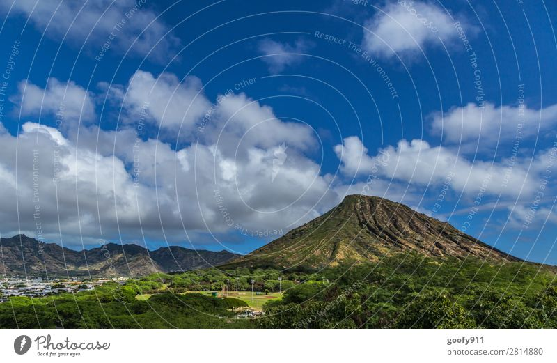 Inland Oahu/Hawaii Vacation & Travel Tourism Trip Adventure Far-off places Freedom Expedition Summer Island Sky Clouds Beautiful weather Tree Mountain Peak