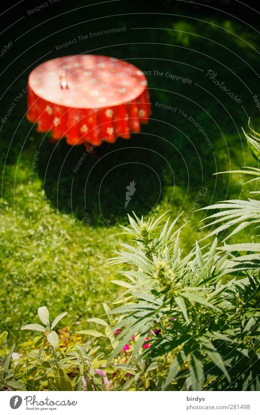 Nature Green Beautiful Summer Red Calm Meadow Garden Growth Authentic Illuminate Idyll Round Partially visible Tablecloth Original