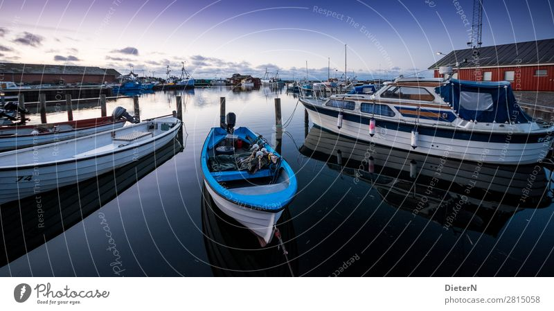 dawn Fishing boat Sport boats Yacht Yacht harbour Blue Black White Harbour Colour photo Subdued colour Exterior shot Deserted Copy Space top Copy Space bottom