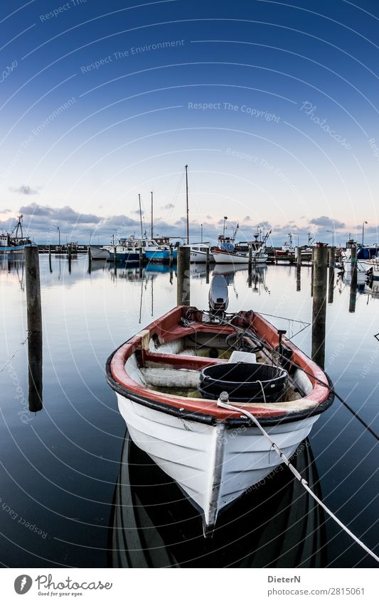 silent Fishing boat Harbour Rope Blue Black White Wooden stake Water Sky Colour photo Subdued colour Exterior shot Deserted Copy Space top Morning Dawn Light
