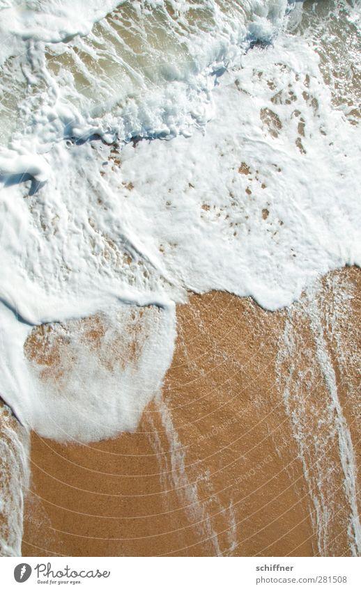 foam bath Nature Beach Ocean Wet Surf White crest Waves Wave action Sand Coast Swakopmund Namibia Exterior shot Deserted