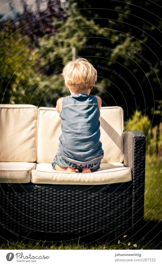 and wait. Joy Summer Sun Garden Swimming pool Toddler Water Warmth Meadow Blue white Boy (child) Hammock Outdoor furniture youthful cute Rear view Back Kneel